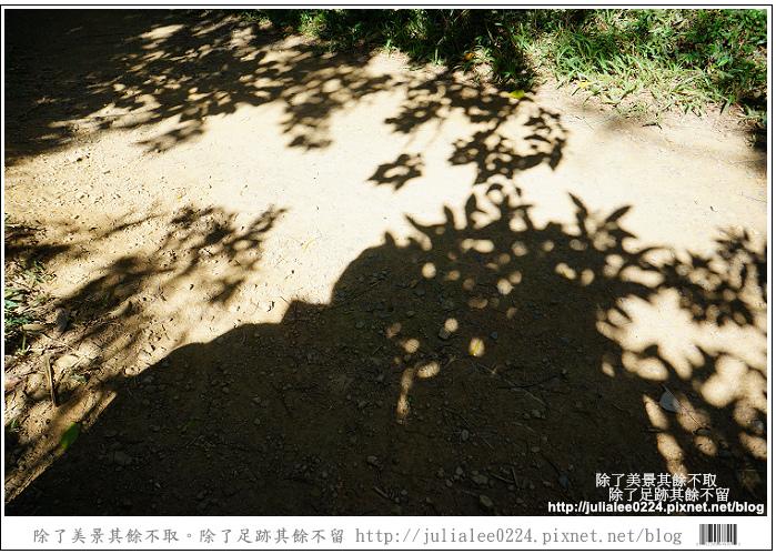 南仁湖 (18)