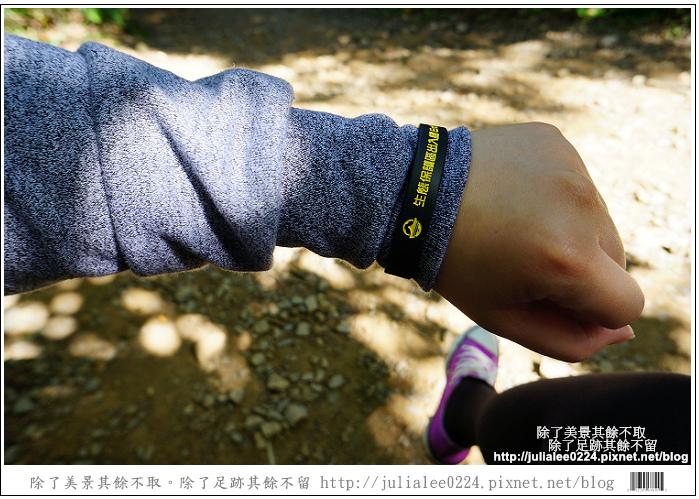南仁湖 (19)