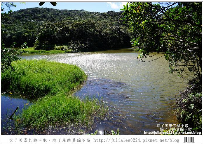 南仁湖 (21)