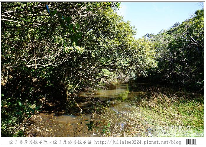 南仁湖 (22)