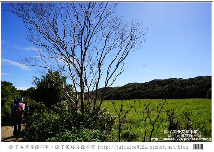 南仁湖 (29)
