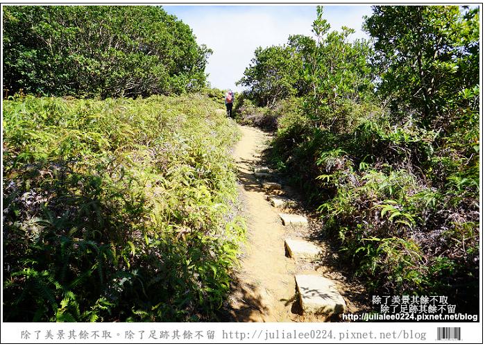 南仁湖 (33)