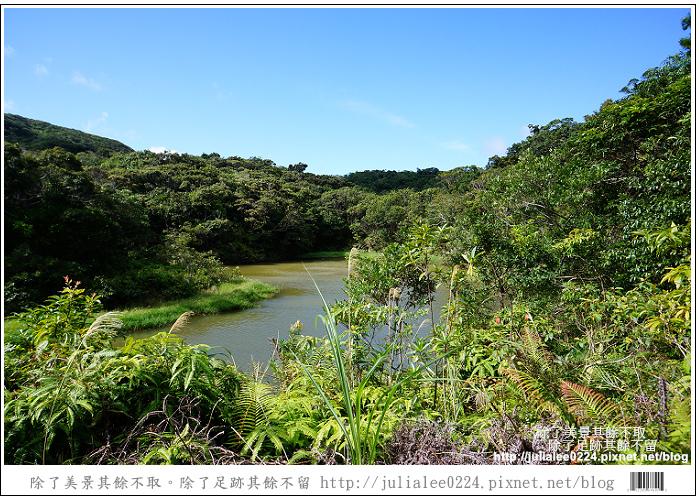 南仁湖 (62)