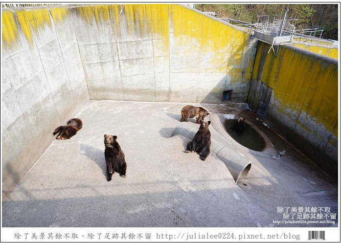 熊牧場 (70).jpg