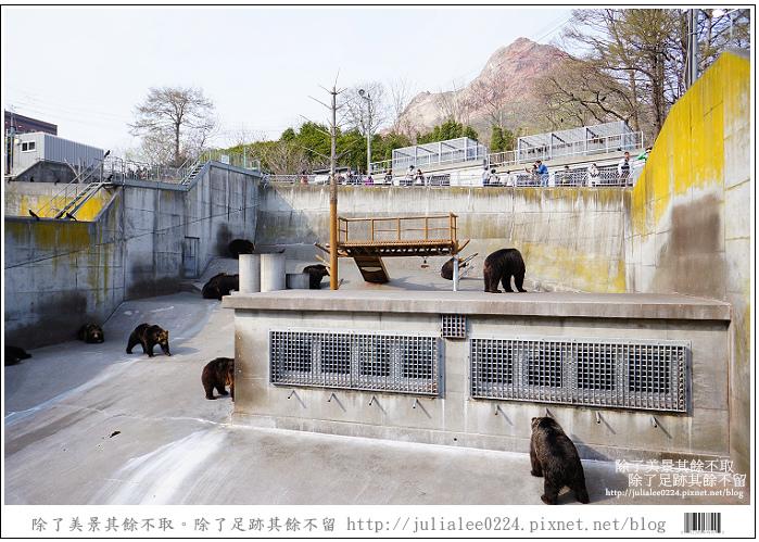 熊牧場 (77).jpg
