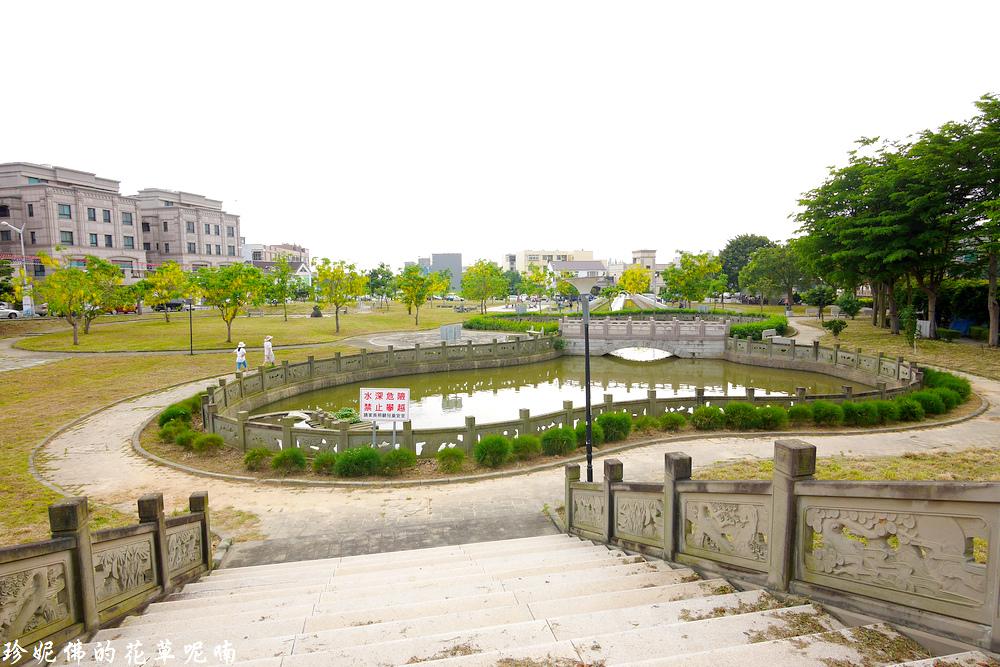 Ecology pond.jpg