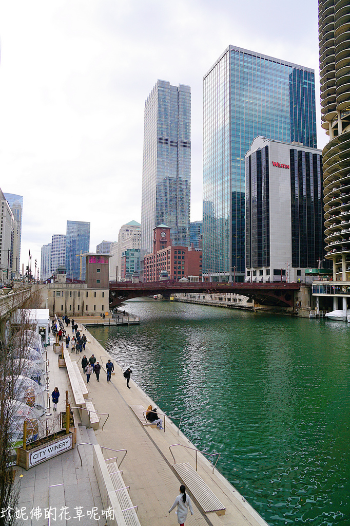 Chicago (1000).jpg