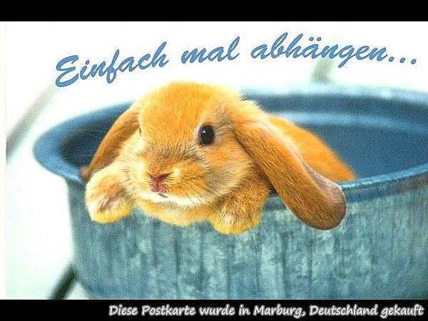 PhotoCap_Kanichen 16.jpg