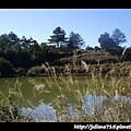 PhotoCap_11020620 日.jpg