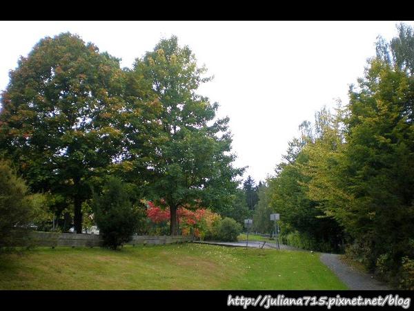 PhotoCap_08092422 (Helen).jpg