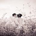 Julia Wedding News新婚情報台北茱麗亞婚紗攝影婚紗禮服-