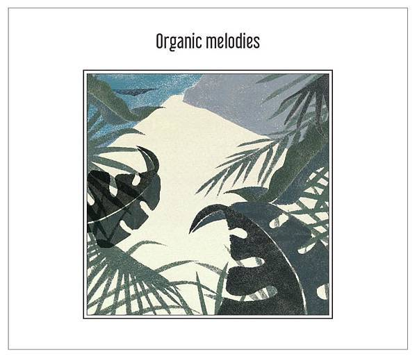 puzzle man organic melodies