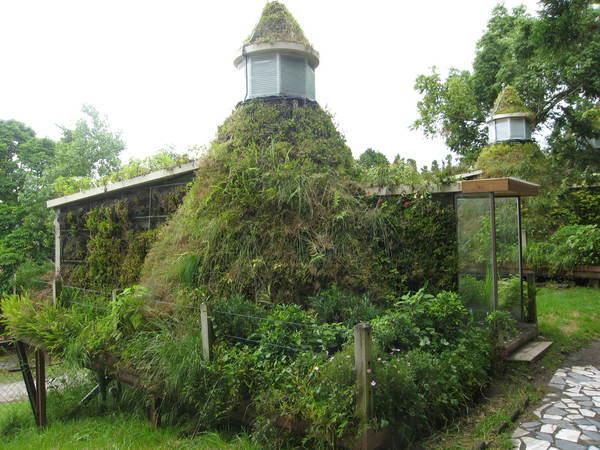 是碉堡ㄇ.jpg