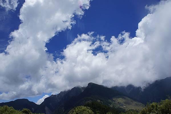 黑森林後的天空