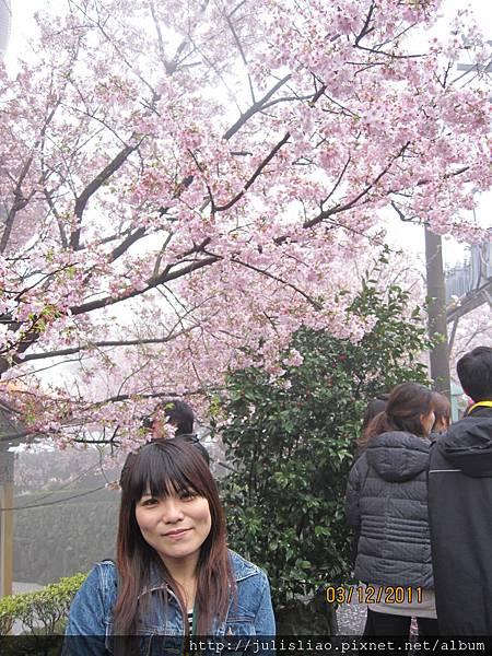 2011.03.12 淡水天元宮賞櫻行 (36).JPG