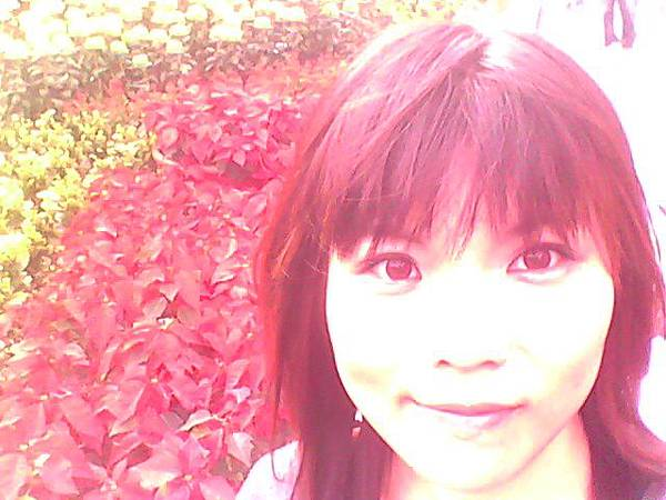 2010.12 (80).jpg