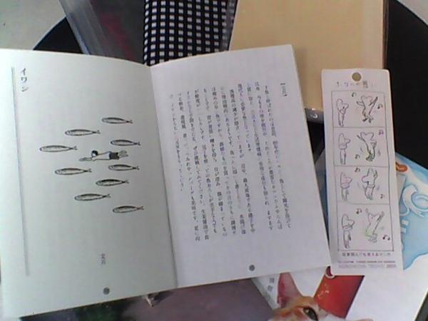2010.12.11 1101開箱 (10).jpg