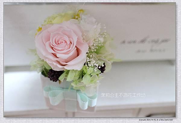 A小盆花.jpg