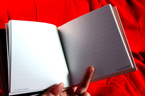 Jill Stuart Diary 2010