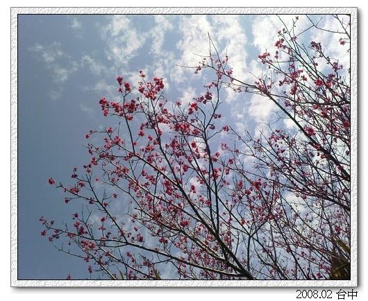 IMAGE_00143_S.jpg