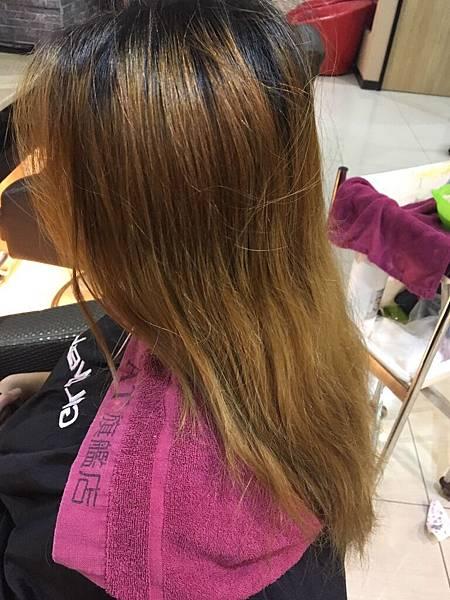 髮質重要性