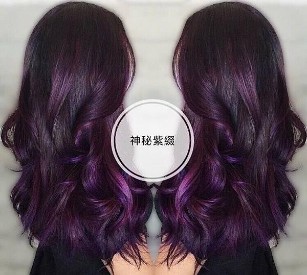 紫紅漸層染髮,北車推薦女生染髮.jpg