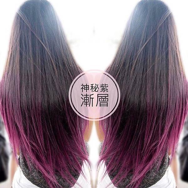 紫紅色系漸層,網路推薦女生染髮.jpg