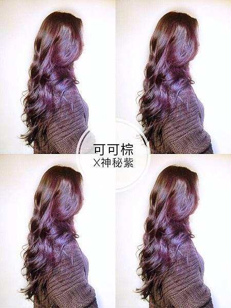 霧感棕x紫紅色系,台北女生染髮.jpg