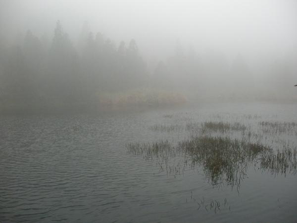 冷水坑.夢幻湖.竹蒿山.擎天崗 090.JPG