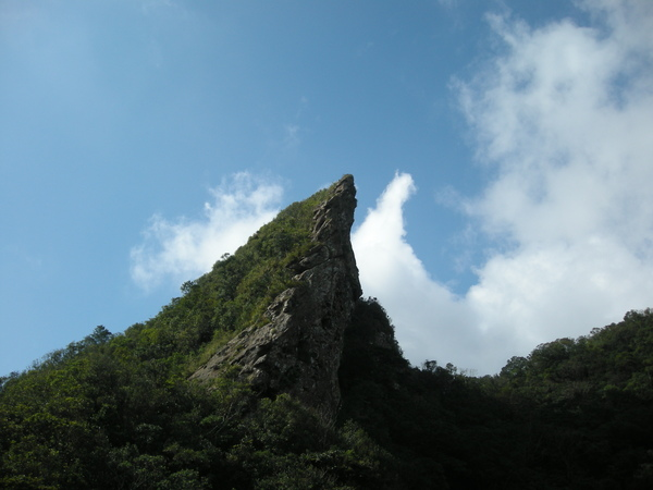 石筍尖 235.JPG