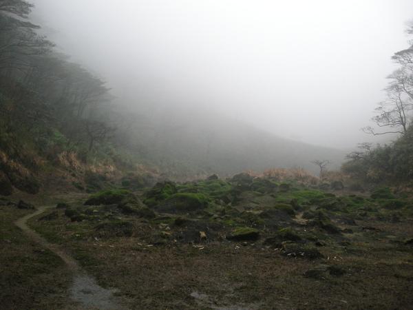 冰封七星山 285 (26).JPG