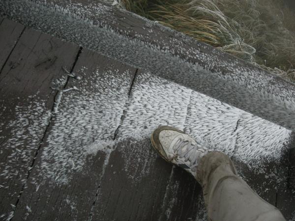 冰封七星山 285 (118).JPG