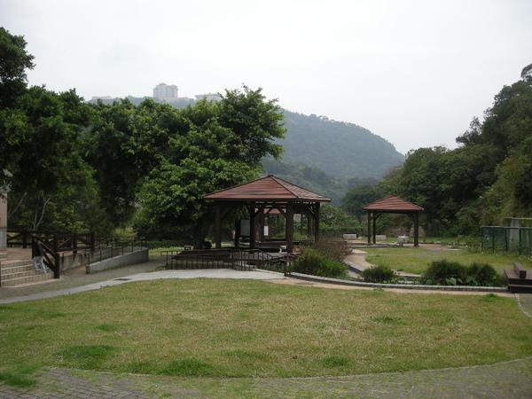 陽明山大屯瀑布.賞櫻花 053.JPG