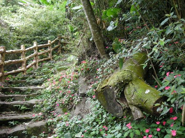 中正山 066.JPG