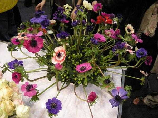 小巨蛋花卉展 076.JPG