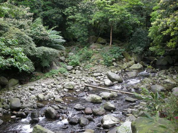 緣道 (184).JPG