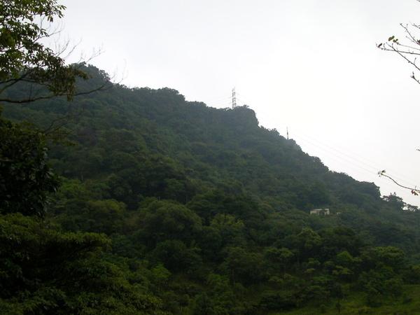 95峰.南港山  (34).JPG