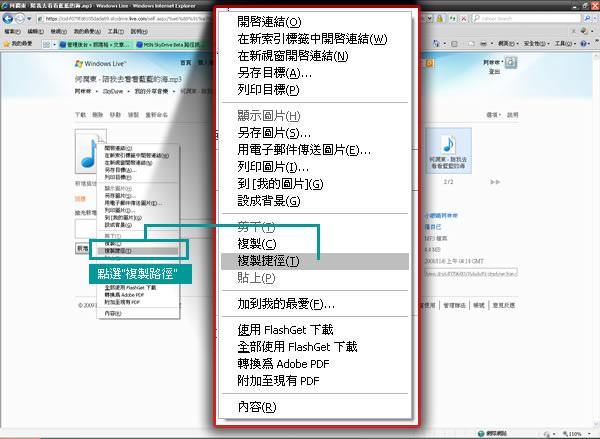 MSN SkyDrive Beta檔案下載路徑-02