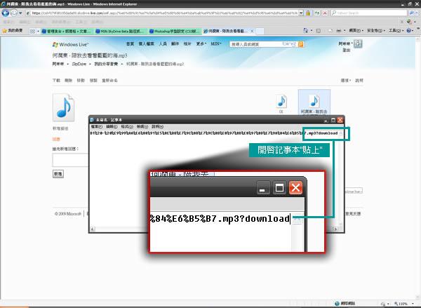 MSN SkyDrive Beta檔案下載路徑-03