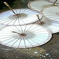 紙傘_7099-800x600 - 複製.jpg