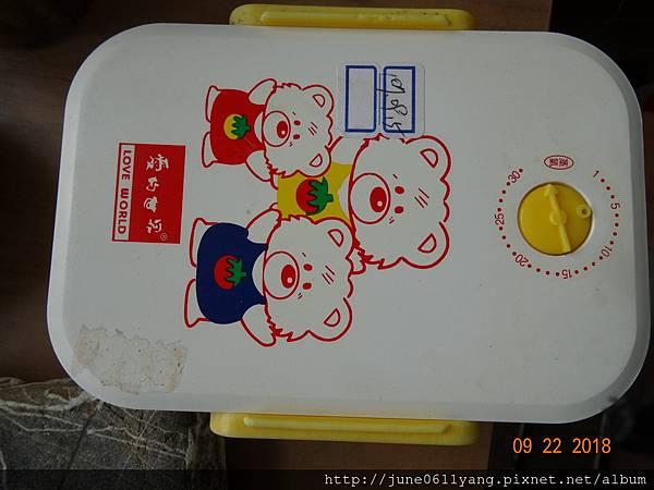 福木種子盆栽 (12).JPG