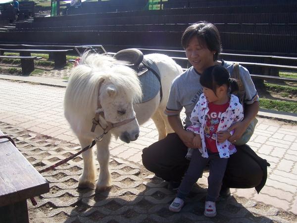 馬~怕怕.JPG