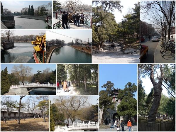 Day7_看著湖上尚未融化的冰...很喜歡的感覺呢~