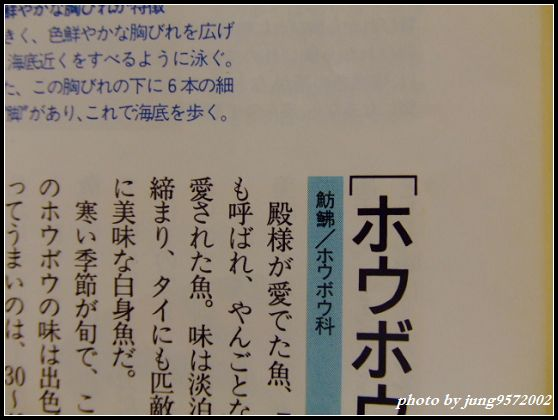 BLOG0093.JPG