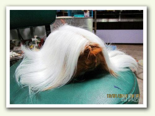 白髮魔女1