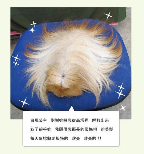 長髮王子5