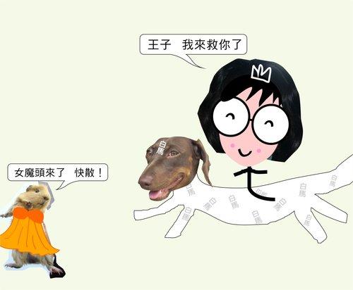 長髮王子4