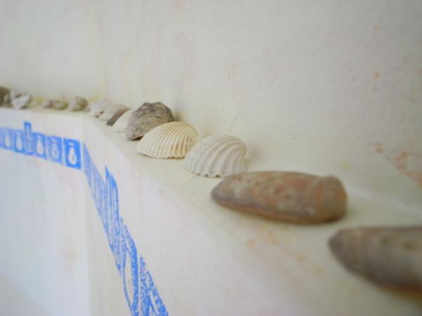 樓梯間的貝殼~