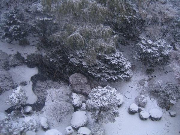 溫泉飯店外的雪景