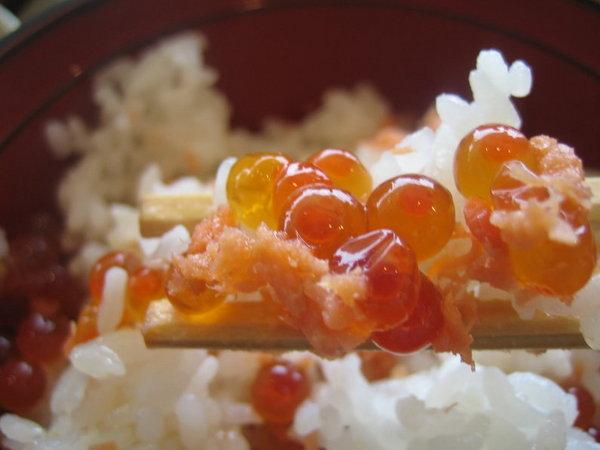 洞爺湖風味餐--鮭魚蓋飯